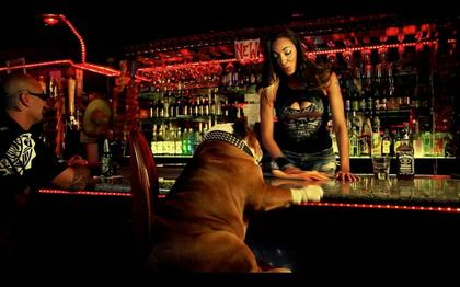 Da Doeg At The Bar
